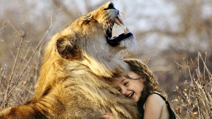 【理解の大切さ】感情を読み取ろうとしなければ人間関係の崩壊が来ます